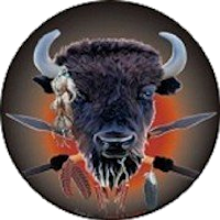 Paraplegic Buffalos team logo